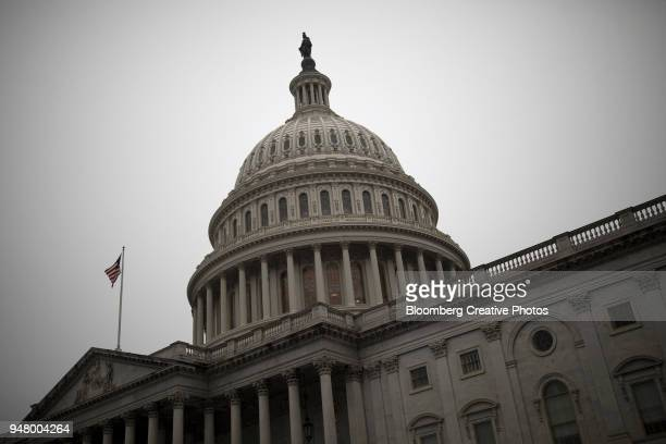 the u.s. capitol - congress stock pictures, royalty-free photos & images