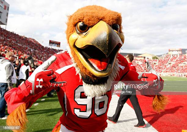 The Utah Utes mascot 'Swoop' performs during a game against the Stanford Cardinal at an NCAA football game October 12 2013 at Rice Eccles Stadium in...