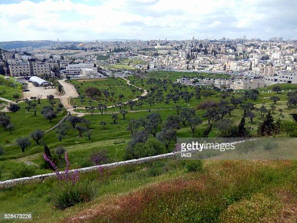 the valley of rocks and the old city of jerusalem - mount of olives stock photos and pictures