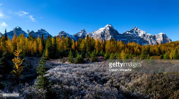 the valley of the ten peaks - valley of the ten peaks stock pictures, royalty-free photos & images