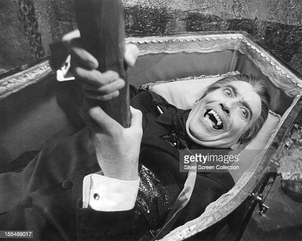 The vampire Count Dracula played by English actor Christopher Lee suffers a stake through the heart as he lies in his coffin in 'Dracula Has Risen...