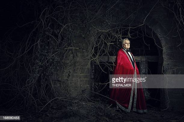 the vampire - vampire stock pictures, royalty-free photos & images