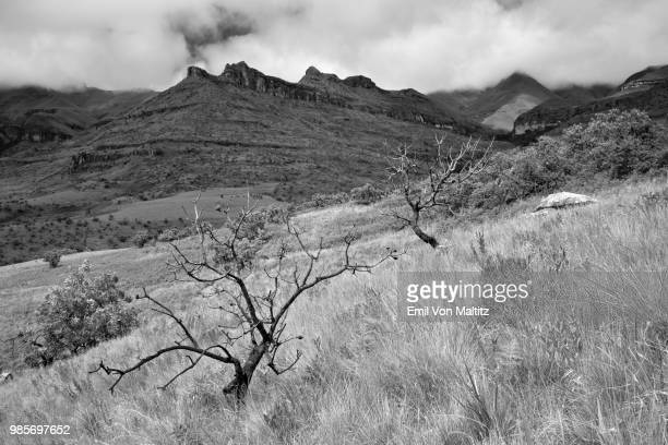 The vast and maestoso panorama that is the Amphitheater, with a nimbostratus cloud covering. Horizontal black and white image taken from below. Northern Drakensberg, Kwazulu Natal Province, Royal Natal National Park, South Africa