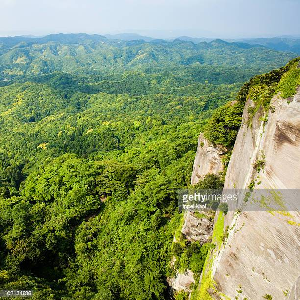the vast lush green forest from the cliff top - 千葉県 ストックフォトと画像