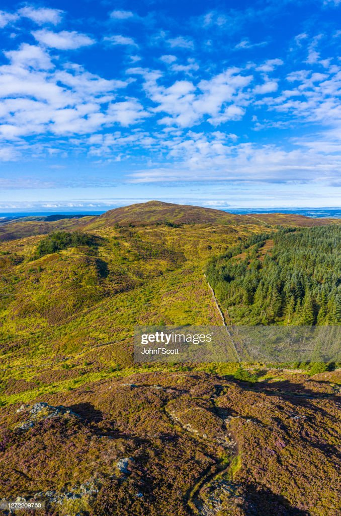 The vertical panoramic aerial view of hills and forest in rural Dumfries and Galloway : Stock Photo