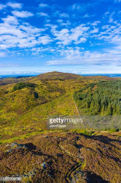 the vertical panoramic aerial view of hills and forest in rural dumfries and galloway - johnfscott stock pictures, royalty-free photos & images