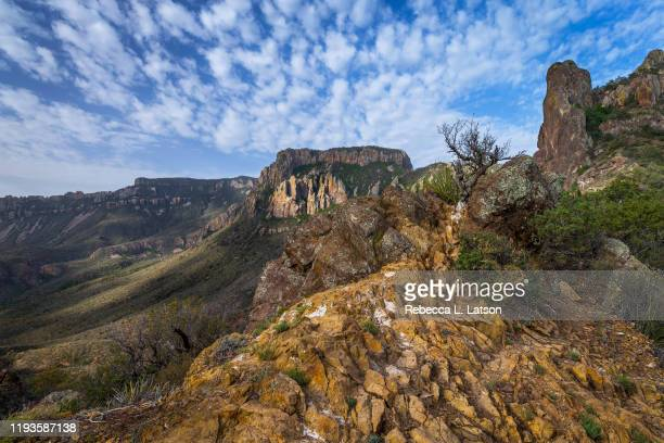 the view along lost mine trail - chihuahua desert stock pictures, royalty-free photos & images