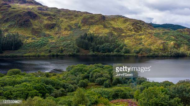 the view from a drone of woodland and a loch in dumfries and galloway on an overcast day - johnfscott stock pictures, royalty-free photos & images