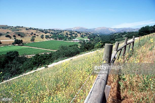 The view from Fess Parker's winery where actor Fess Parker who starred in Disney's Davy Crockett series in the 1950's now resides May 25 2000 in Los...
