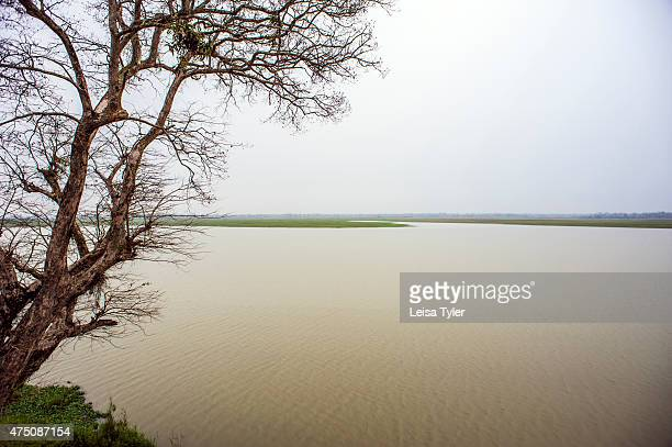 The view from the banks of the Brahmaputra River in Assam India