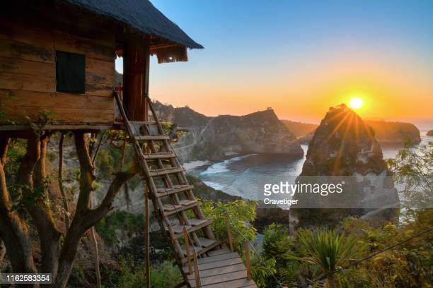 the view from the famous rumah pohon molenteng, or the nusa penida treehouse, bali, indonesia. - nusa penida stock pictures, royalty-free photos & images