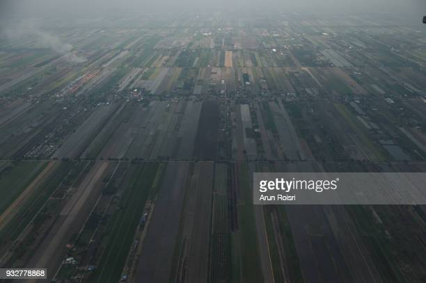 The view from the window of the plane to the rice filed of Bangkok, Thailand.