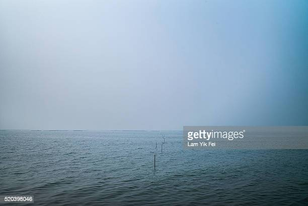 The view of the sea at Ha Pak Nai near border on March 31 2016 in Hong Kong Despite recent protests seen from Hong Kong's opposition lawmakers on the...
