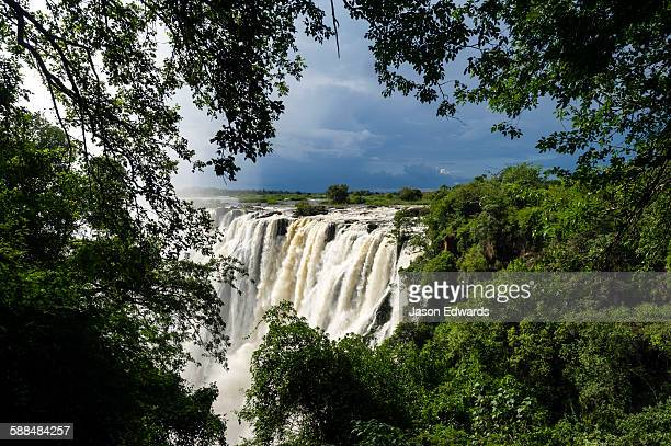 The view of Victoria Falls through a rainforest canopy as it plunges into the cataract.