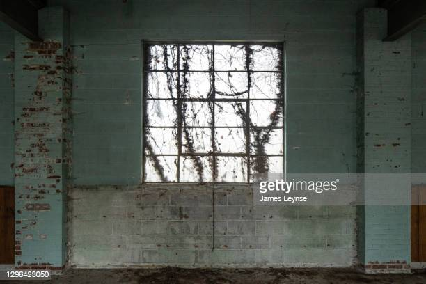 the view out the window inside an abandoned factory in new jersey - woodbridge nueva jersey fotografías e imágenes de stock