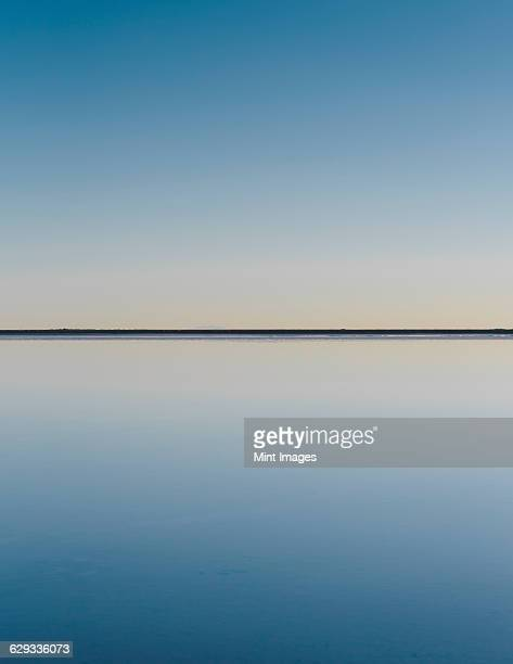 the view to the clear line of the horizon where land meets sky, across the flooded surface of bonneville salt flats. dawn light, - purezza foto e immagini stock