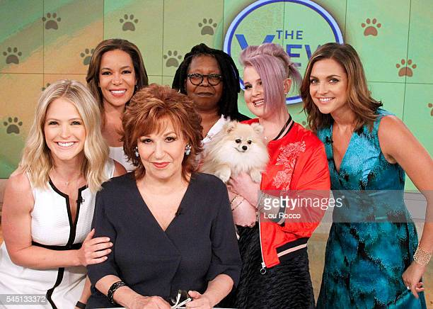 THE VIEW The View's Eighth Annual Mutt Show airs Friday July 1 2016 airing on the Walt Disney Television via Getty Images Television Network FARIS