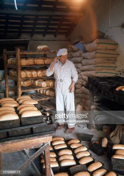 The village baker surrounded by his loaves at work in the old bakery at Pembridge in England circa June 1966 During the summer of 1966 British...
