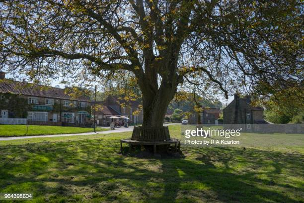The village green at Hutton-le-Hole, North Yorkshire, England