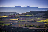 village briones fields la rioja spain