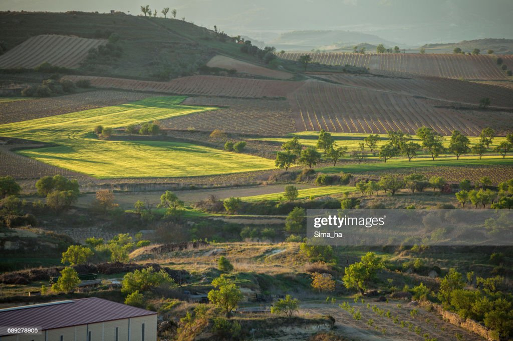 The village of Briones and fields.  Rioja Alta, Spain : Stock Photo