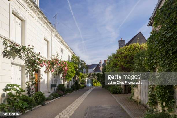 the village of chedigny in the loire valley of france. - chedigny photos et images de collection