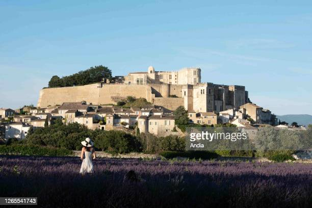 The village of Grignan, in the Drome provencale area : back view of a woman in a lavender field looking at the village and the castle. The village...