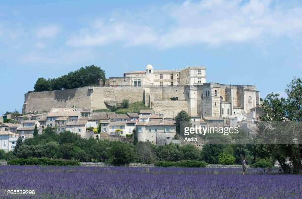 The village of Grignan, in the Drome provencale area : overview of lavender fields, the village and the castle. The village was awarded the Plus...