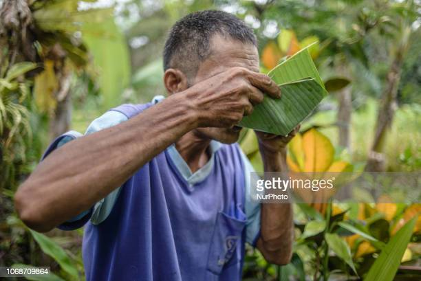 The villagers drink coconut water from banana leaves at the village near Ubud Ubud District Bali Indonesia in November 2018