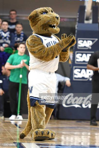 The Villanova Wildcats mascot on the floor during a college basketball game against the DePaul Blue Demons at the Finneran Pavilion on January 14...