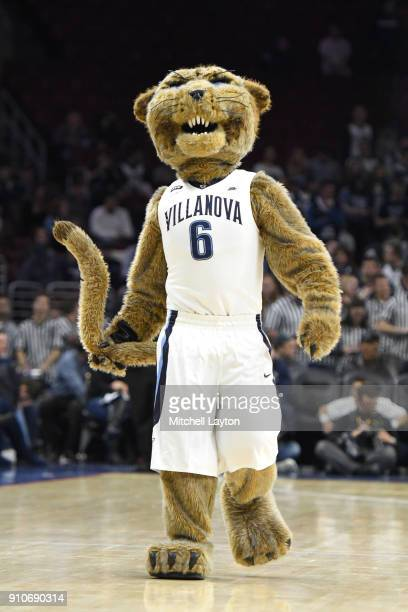 The Villanova Wildcats mascot on the floor during a college basketball game against the Providence Friars at the Wells fargo Arena on January 23 2018...