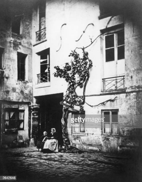 The vine planted by 17th century French poet and dramatist Jean Baptiste Racine at the Rue des Marais St Germain 13 Paris