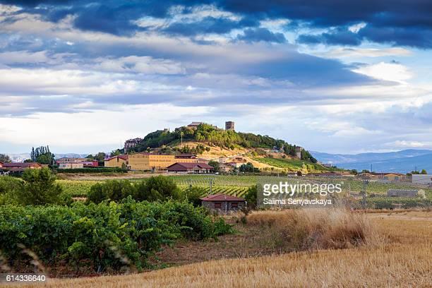 The vineyards of Rioja