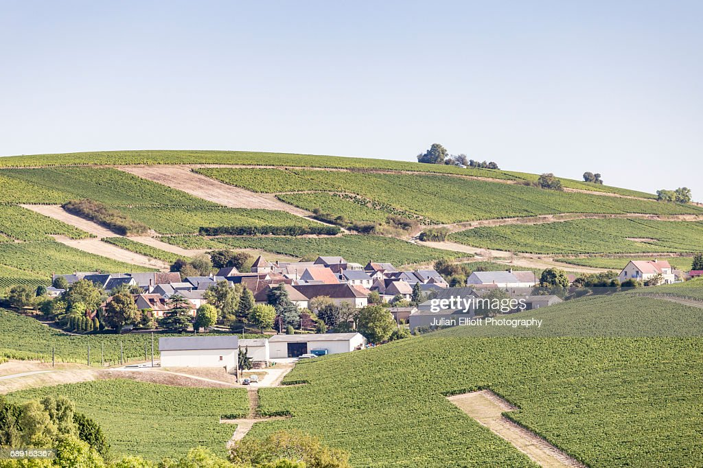 The vineyards of Sancerre, France. : Stock Photo