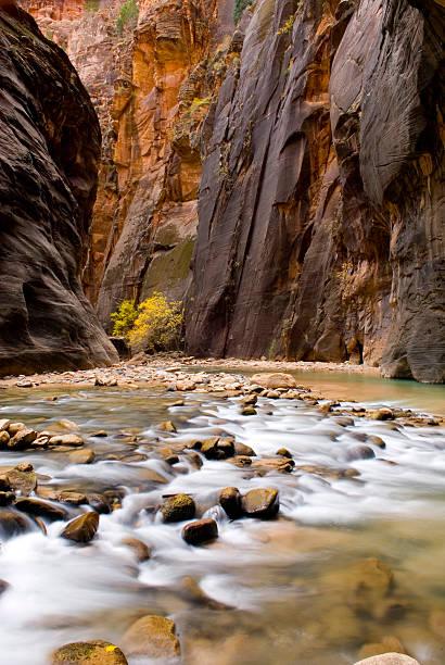 The Virgin River Flowing Through The Zion Canyon Narrows, Zion National Park, Utah. USA Wall Art