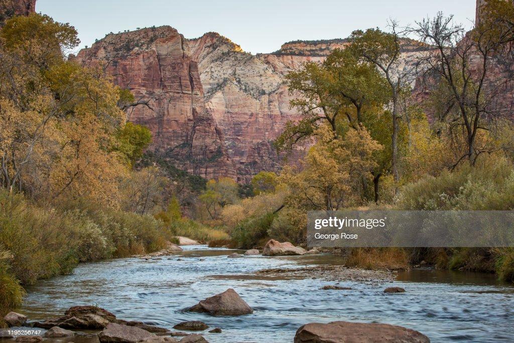 Exploring Autumn in Utah's Zion National Park : News Photo