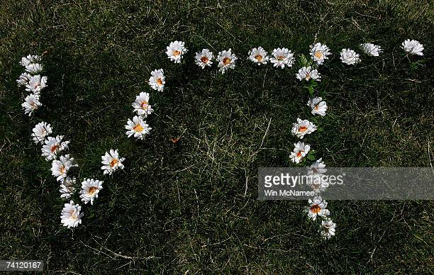 The Virginia Tech logo made of 32 daisies is shown at a memorial to the 32 students and faculty killed in the Virginia Tech shootings at the Drill...