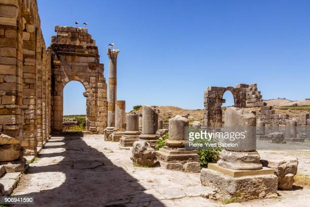 The Volubilis site in Morocco