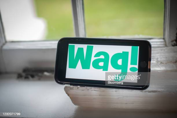 The Wag Labs Inc. Logo on a smartphone arranged in Dobbs Ferry, New York, U.S., Thursday, April 1, 2021. One of the signs that Covid-19's hold over...