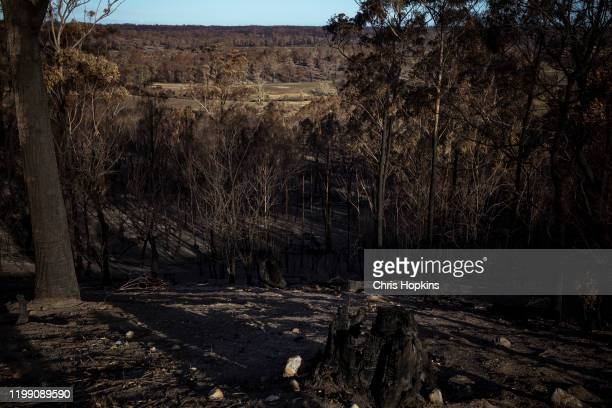 The Wairewa valley as seen from the property of Brian and Elizabeth on January 12 2020 in Wairewa Australia Brian and Elizabeth Blakeman remained at...