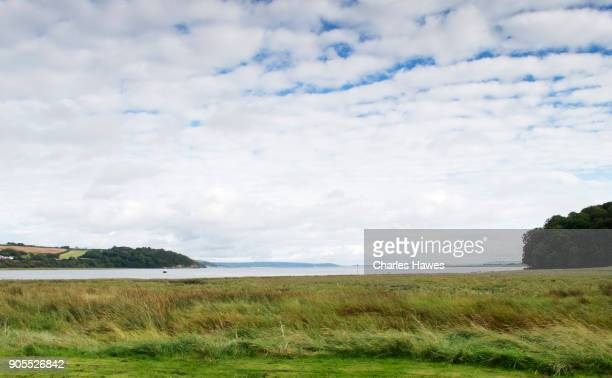 The Wales Coast Path in Carmarthenshire: The Marsh at laugharne