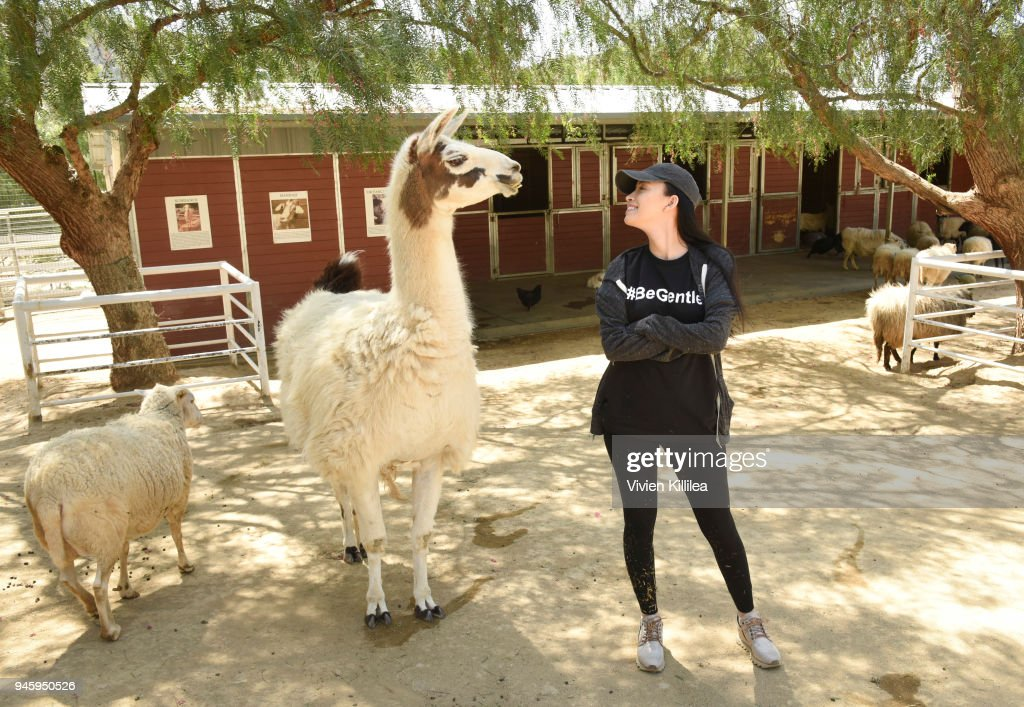 The Walking Dead's Christian Serratos visits rescued farm animals at Gentle Barn sanctuary