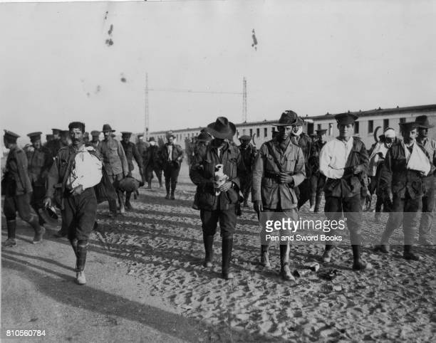The Walking Wounded in Gallipoli