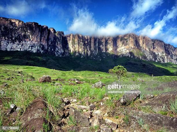 The Wall. Mount Roraima