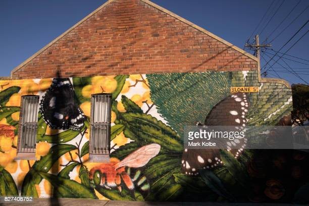 The wall mural 'Bring Back the Butterflies' by artist Rebecca Lourey is seen painted on the side of a house on August 7 2017 in Newtwon Australia...