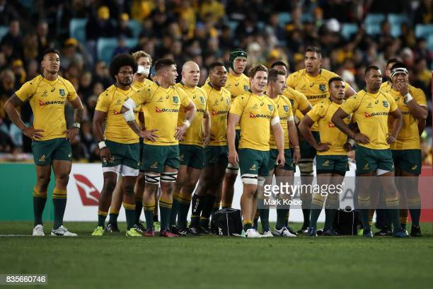 The Wallabies look dejected after an All Blacks try during The Rugby Championship Bledisloe Cup match between the Australian Wallabies and the New...