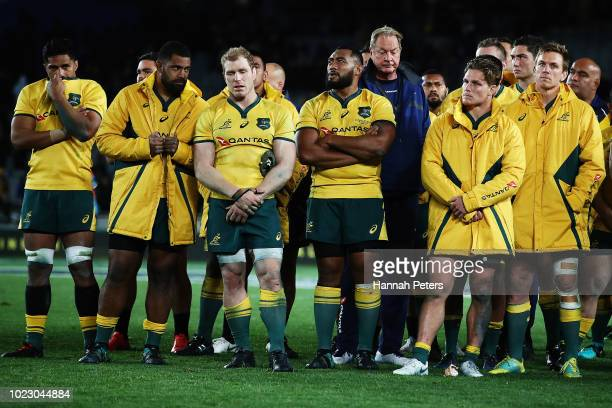 The Wallabies look on after losing The Rugby Championship game between the New Zealand All Blacks and the Australia Wallabies at Eden Park on August...
