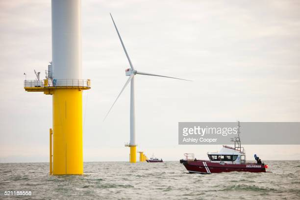 The Walney Offshore Windfarm project