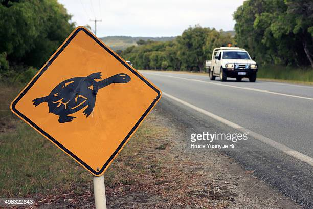 the warning sign of long neck turtle on roadside - long neck animals stock pictures, royalty-free photos & images