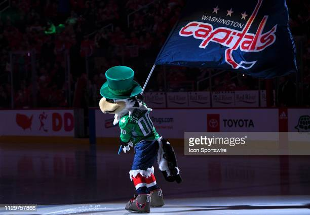 The Washington Capitals mascot Slapshot takes the ice for the game between the Winnipeg Jets and the Washington Capitals on March 10 at the Capital...